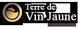 Logo Terre de vin jaune